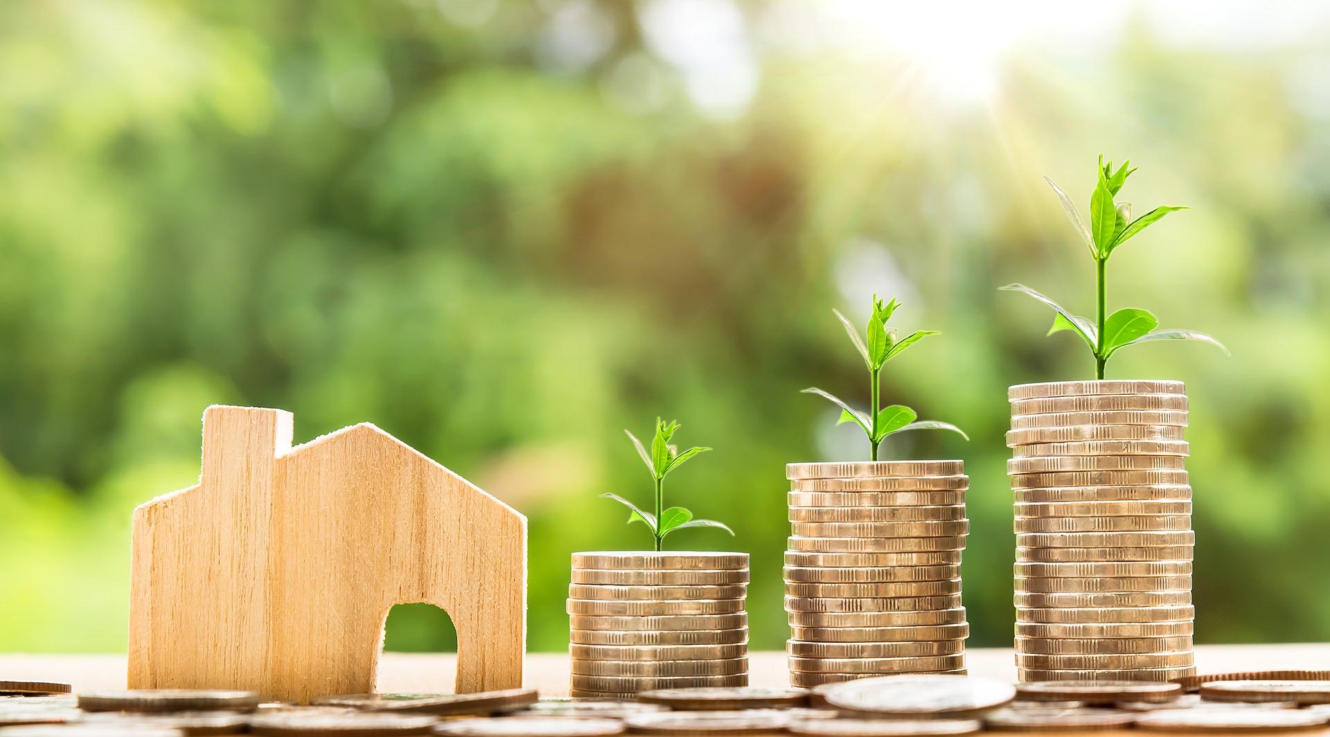 Kleines Holzhaus mit Geldmünzen und Pflanzen